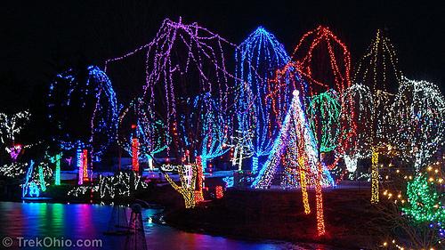 Rotr Zoo Lights Splash